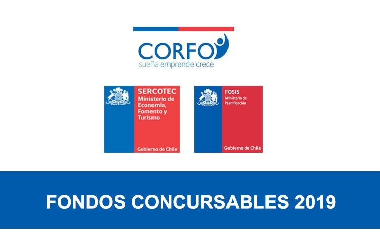 fondos concursables chile 2019